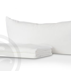 Pillow and pillow protector